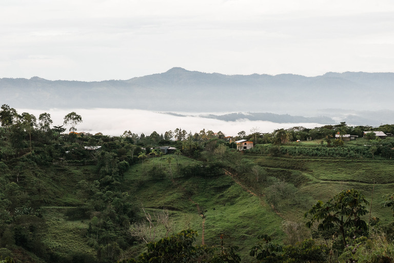 Las Dueñas Coffee Farm