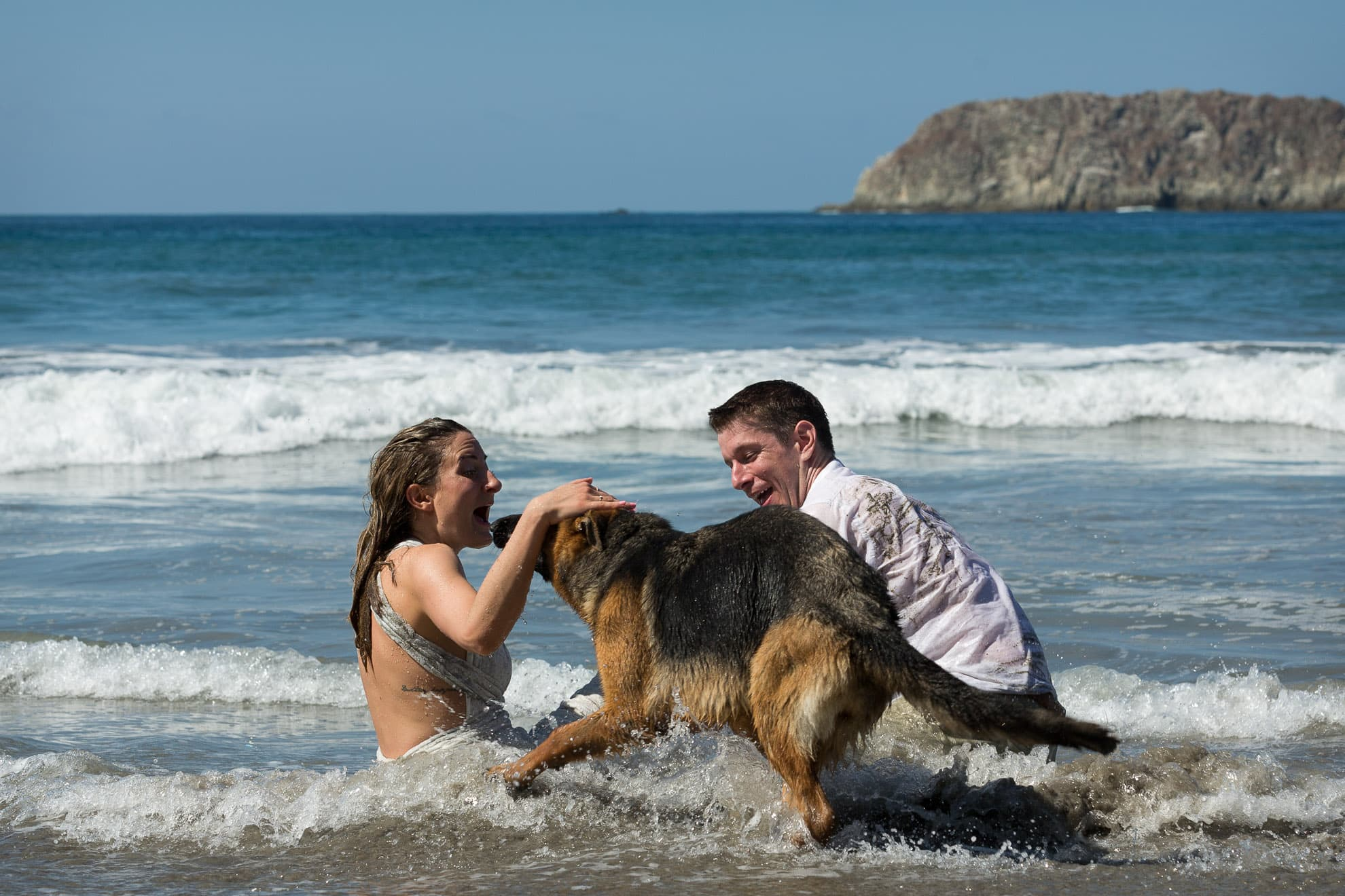 trash the dress with a German Shepard thanking them for their volunteer honeymoon