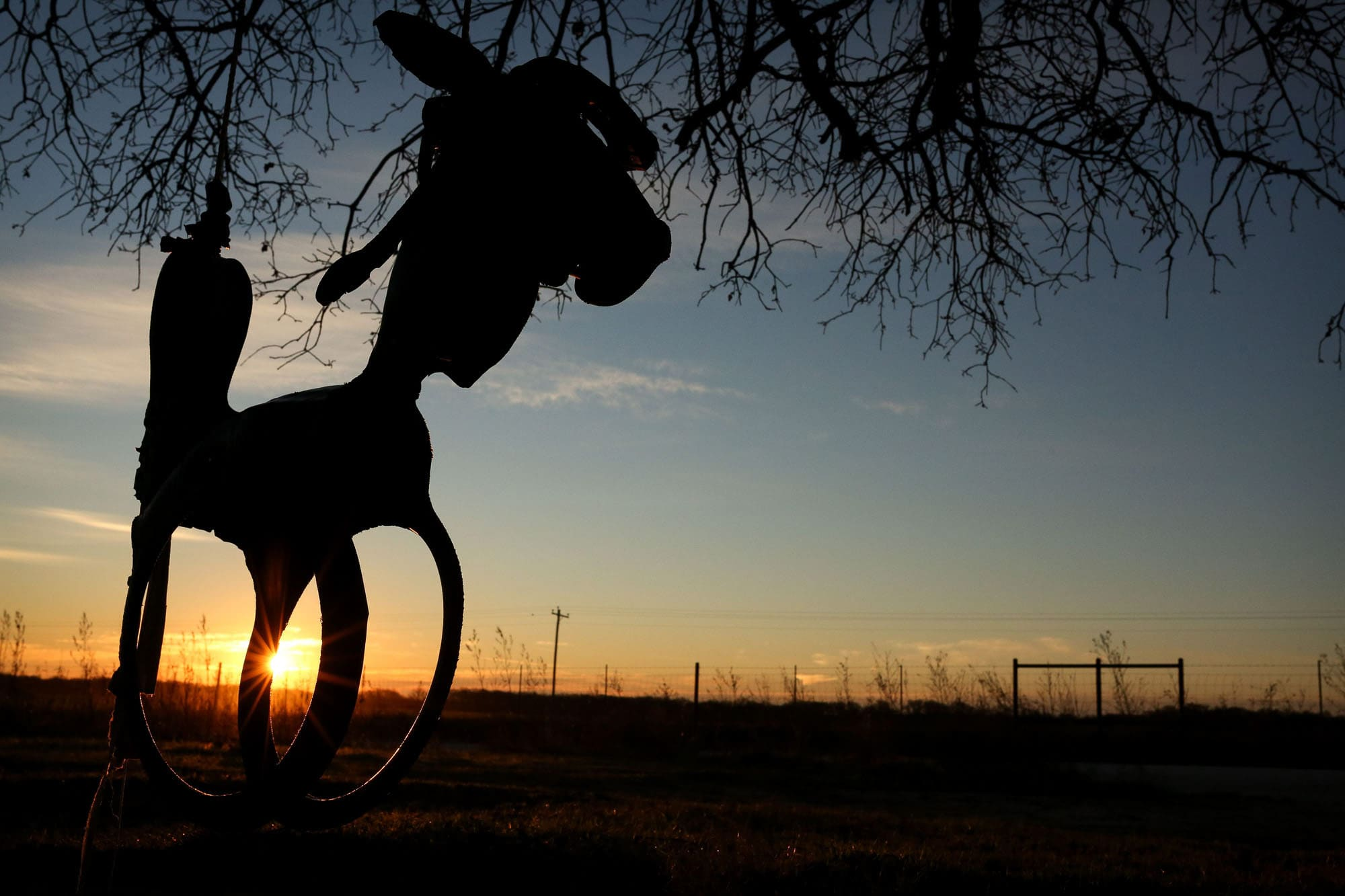 Horse swing at sunrise.