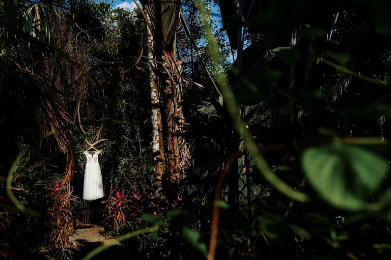 The wedding dress hanging in the jungle