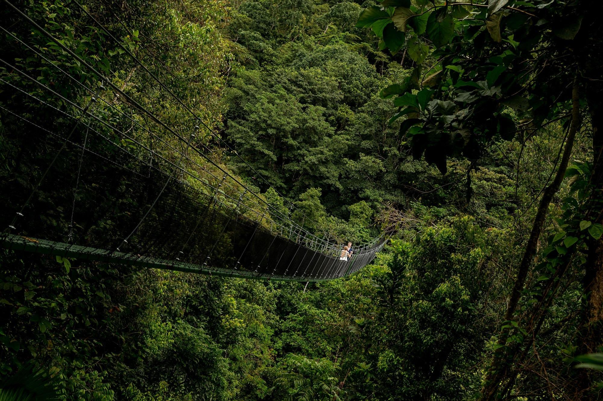 canopy bridge in rainforest wedding