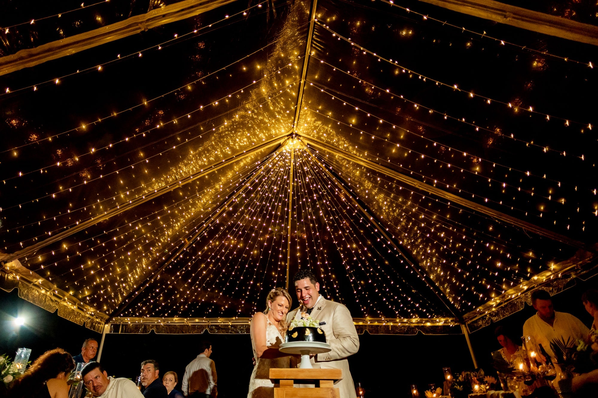 tent with lights at wedding