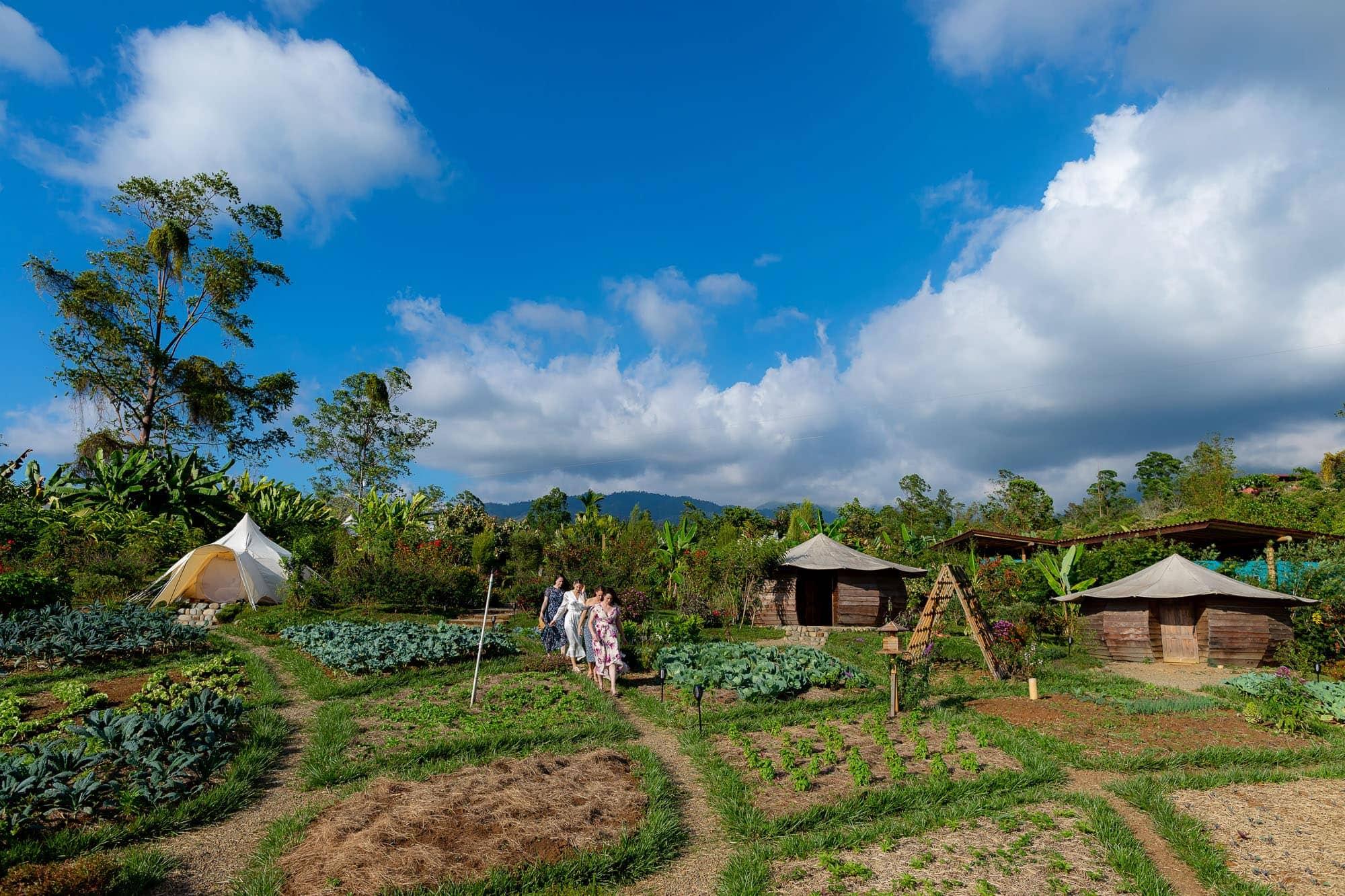 Exploring the grounds at Kinkara