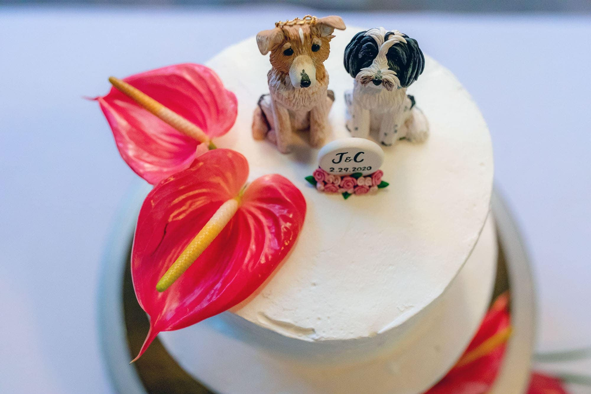 Furry friends on the wedding cake